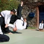 Aikido-Training-Demonstration