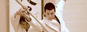 Die japanische Kampfkunst Tendoryu Aikido - Kenji und Kenta Shimizu